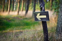 Path-Arrow