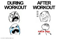 During Workout and After Workout