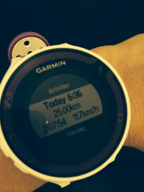 Friday by Garmin