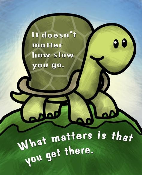 Turtle Slow Running